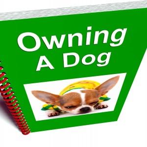 bok om hundlägande